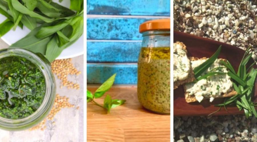 """Nové recepty: jedlé """"plevele"""" na talíři. Jarní bylinky probudí vaši kuchyni"""