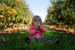 Rawfood a děti? 7 tipů jak naučit děti milovat čisté chutě