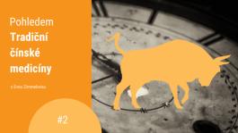 Přepřáhněte: Je tu rok kovového Buvola