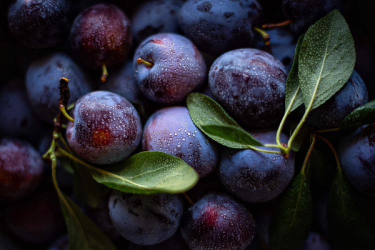 Plum - A delicious fruit