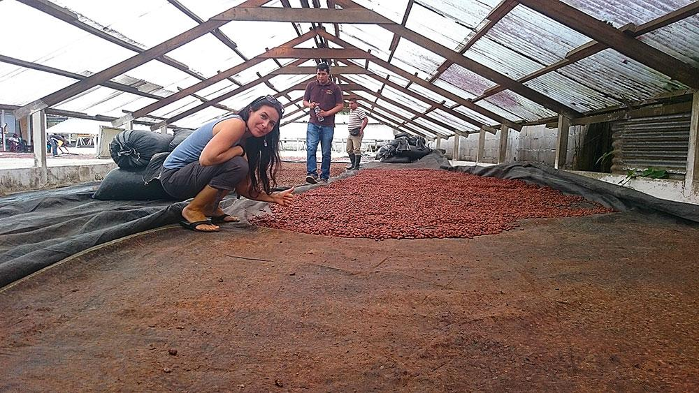 Tereza sleduje sušení kakaových bobů