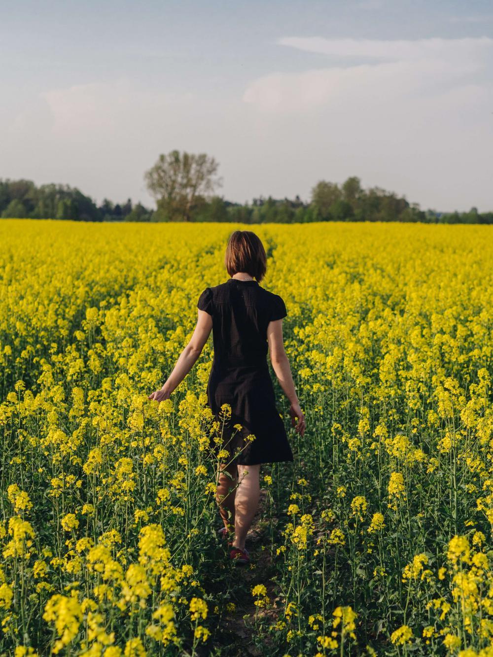 Externality konvenčního zemědělství platíme všichni, třeba v podobě ztráty duše krajiny