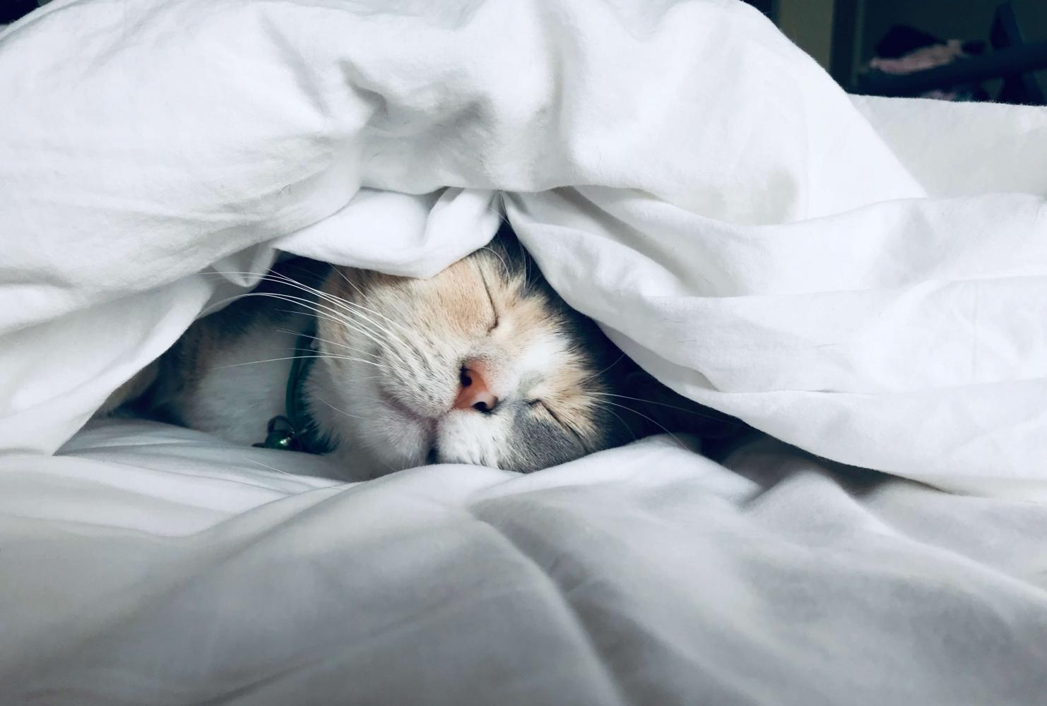 Dobře spát je základ duševní vyrovnanosti